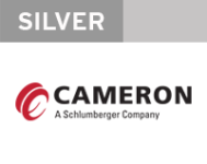 web-cameron-silver