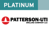 web-patterson-platinum
